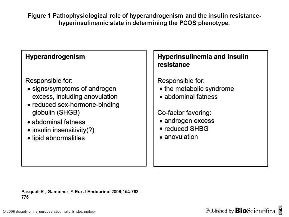 Figure 1 Pathophysiological role of hyperandrogenism and the insulin resistance-hyperinsulinemic state in determining the PCOS phenotype.