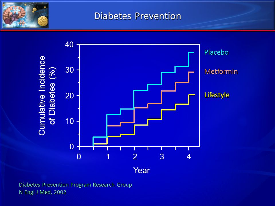 Diabetes Prevention Cumulative Incidence of Diabetes (%) Year 40 30 20
