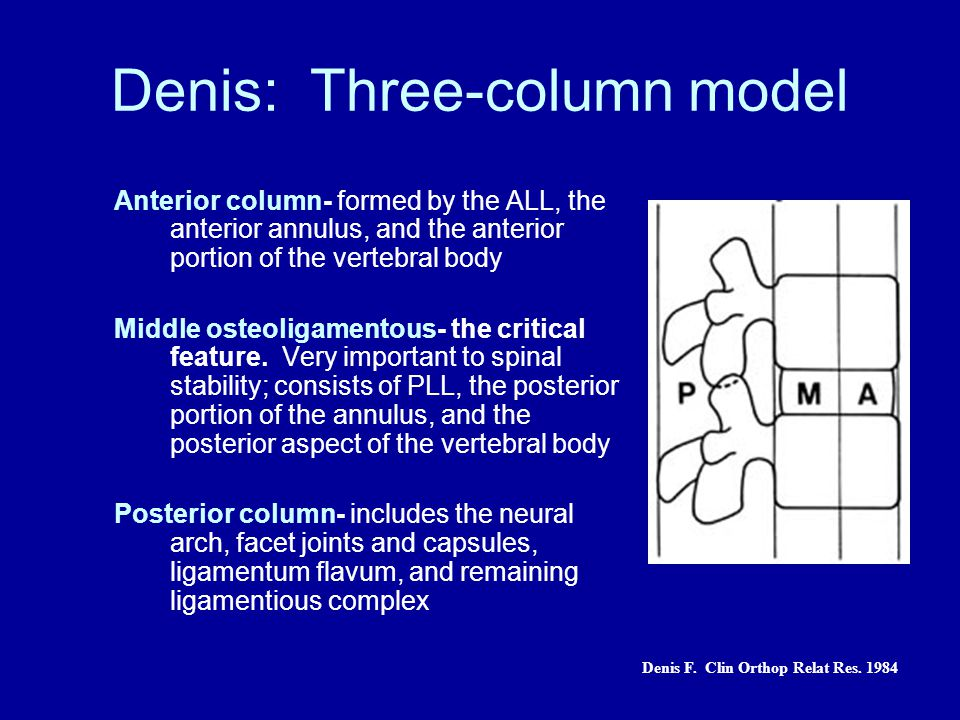 Denis: Three-column model