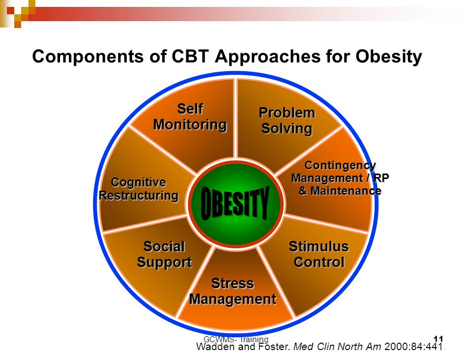 Components of CBT Approaches for Obesity
