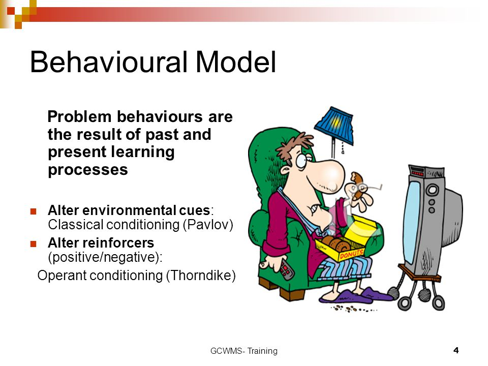 Behavioural Model Problem behaviours are the result of past and present learning processes.