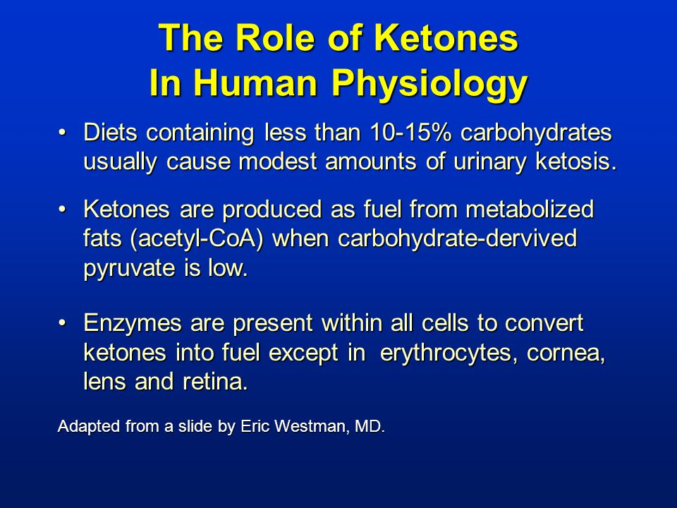 The Role of Ketones In Human Physiology