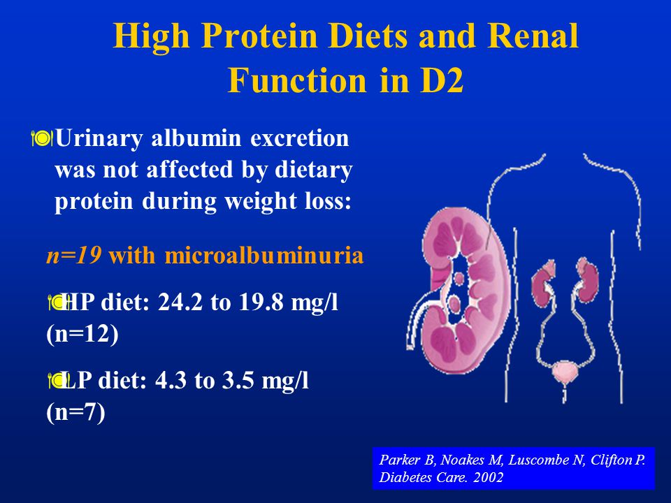 High Protein Diets and Renal Function in D2
