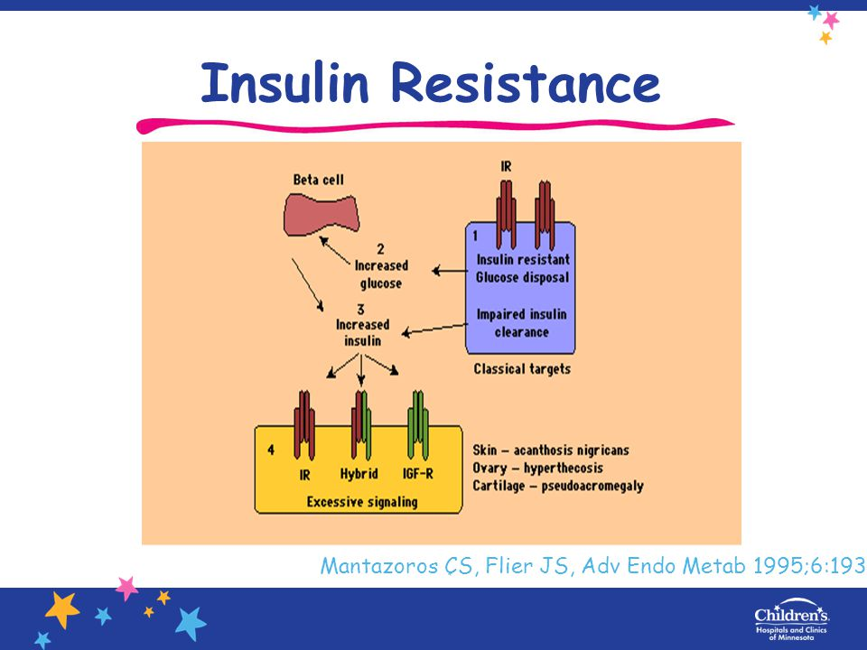 Insulin Resistance Mantazoros CS, Flier JS, Adv Endo Metab 1995;6:193