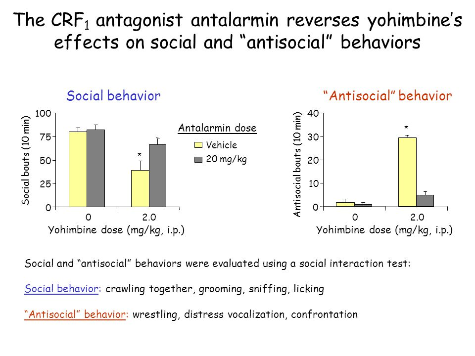 The CRF1 antagonist antalarmin reverses yohimbine's effects on social and antisocial behaviors