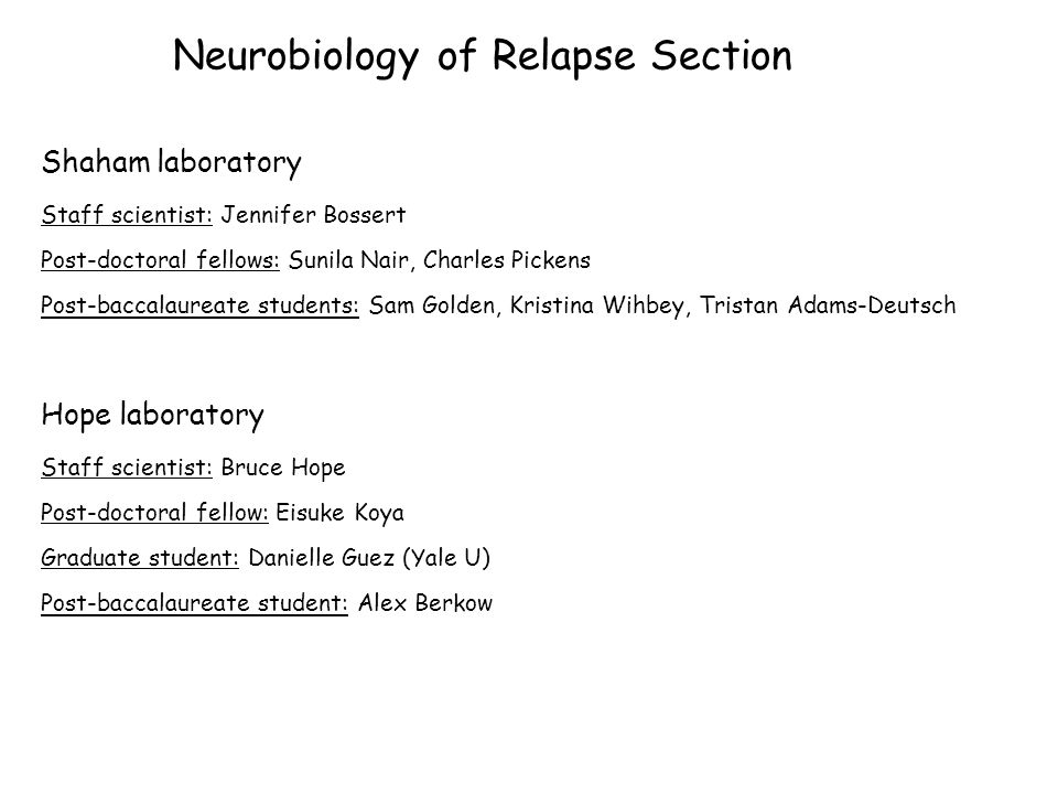 Neurobiology of Relapse Section