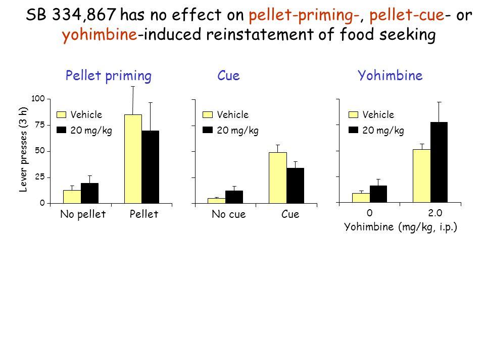 SB 334,867 has no effect on pellet-priming-, pellet-cue- or yohimbine-induced reinstatement of food seeking
