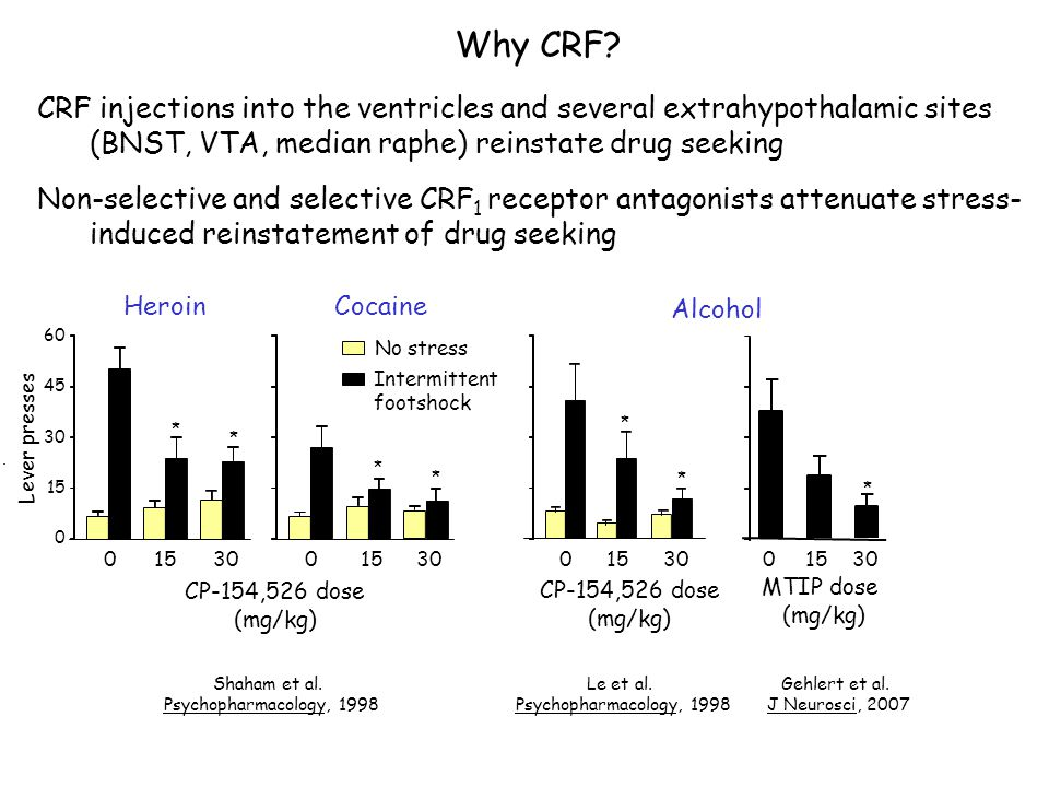 Why CRF CRF injections into the ventricles and several extrahypothalamic sites (BNST, VTA, median raphe) reinstate drug seeking.