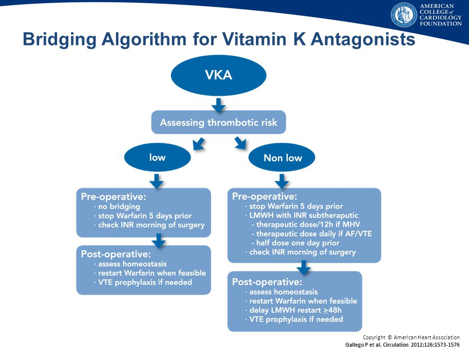 Bridging Algorithm for Vitamin K Antagonists
