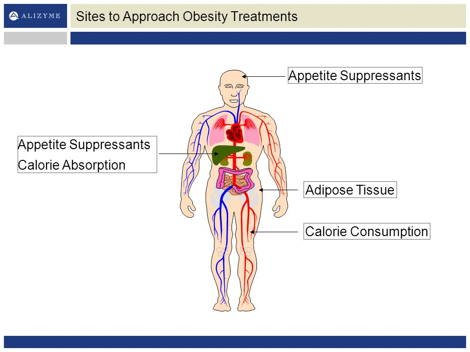 Sites to Approach Obesity Treatments