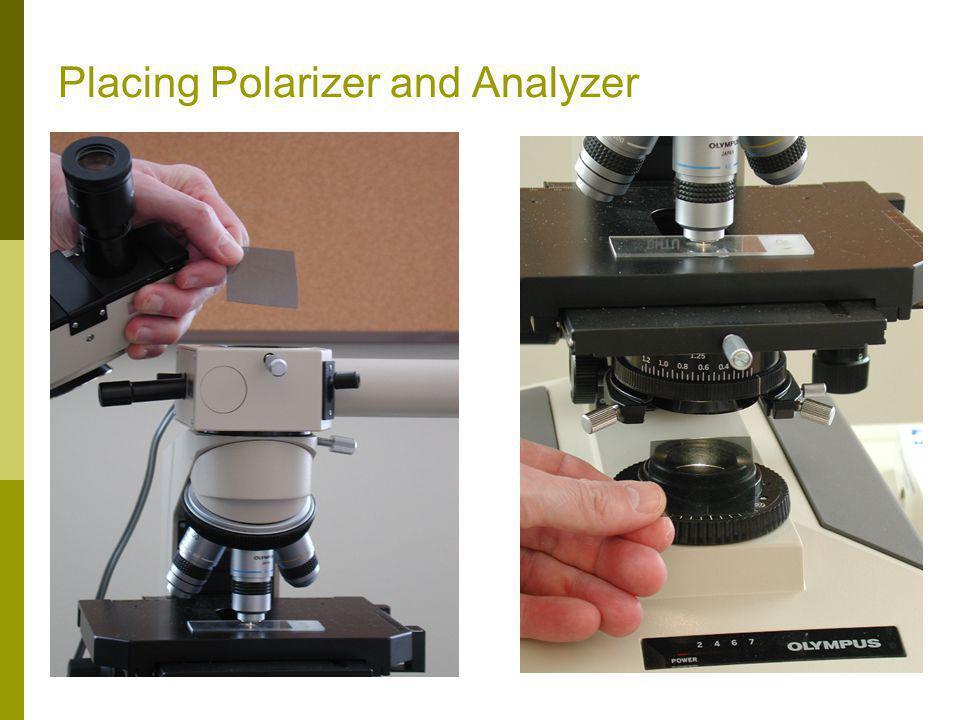 Placing Polarizer and Analyzer