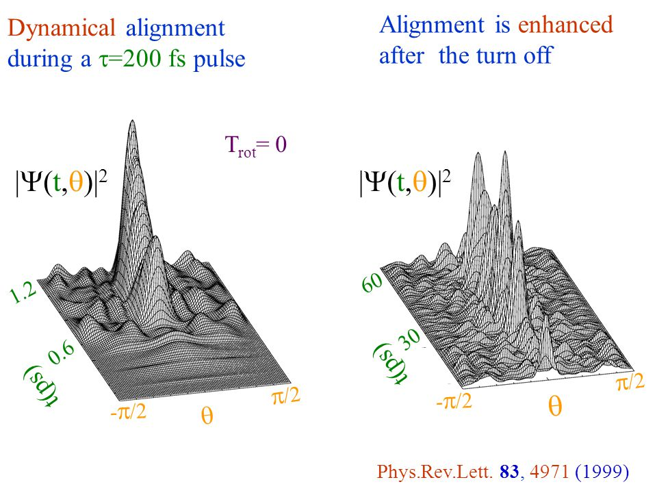 |Y(t,q)|2 Alignment is enhanced after the turn off Dynamical alignment