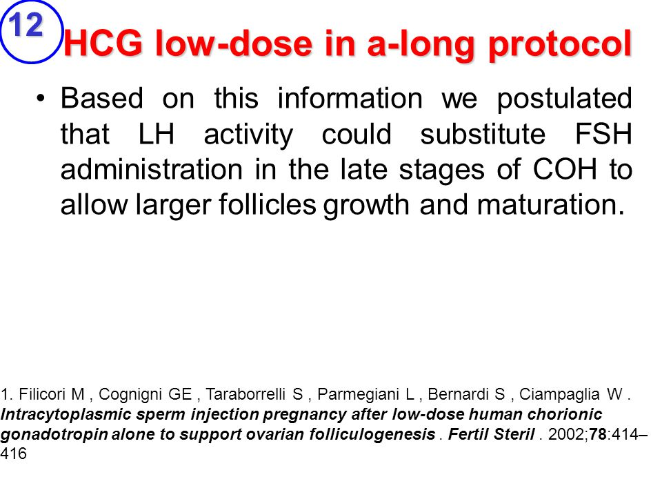HCG low-dose in a-long protocol