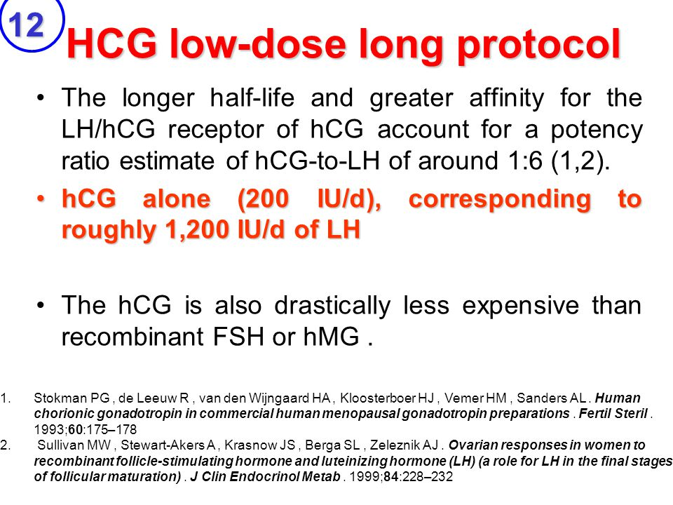 HCG low-dose long protocol