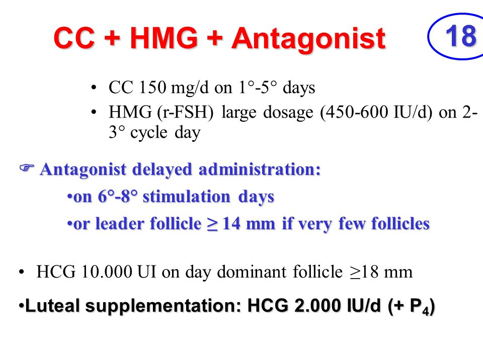 18 CC + HMG + Antagonist CC 150 mg/d on 1°-5° days