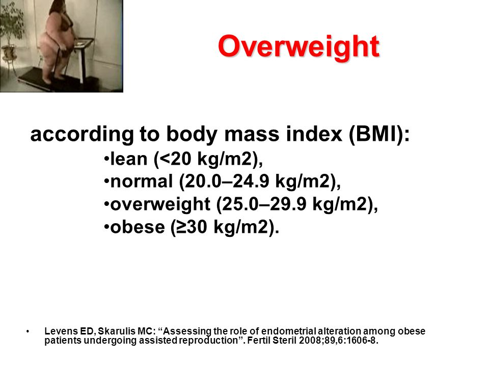 Overweight according to body mass index (BMI): lean (<20 kg/m2),