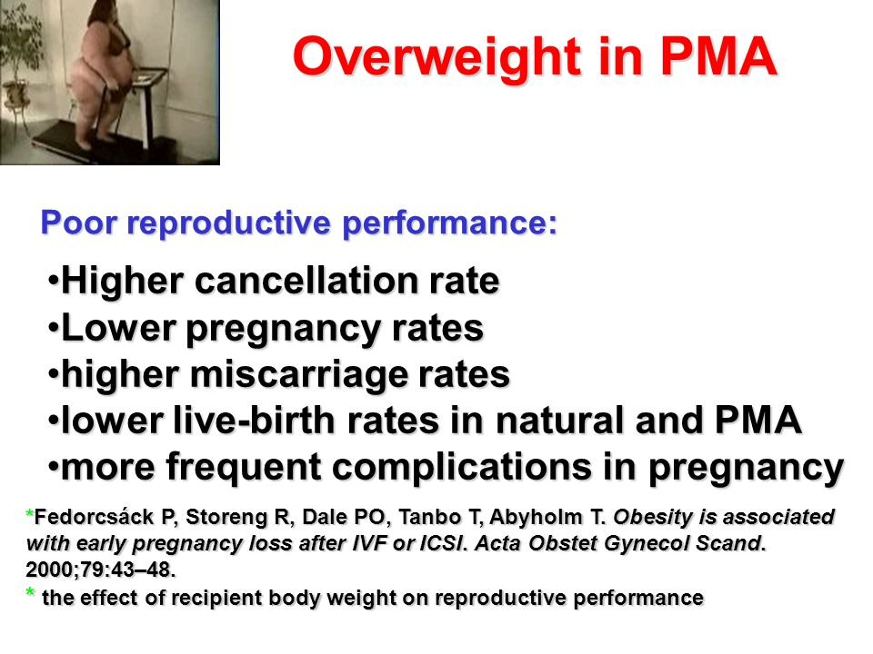 Overweight in PMA Higher cancellation rate Lower pregnancy rates
