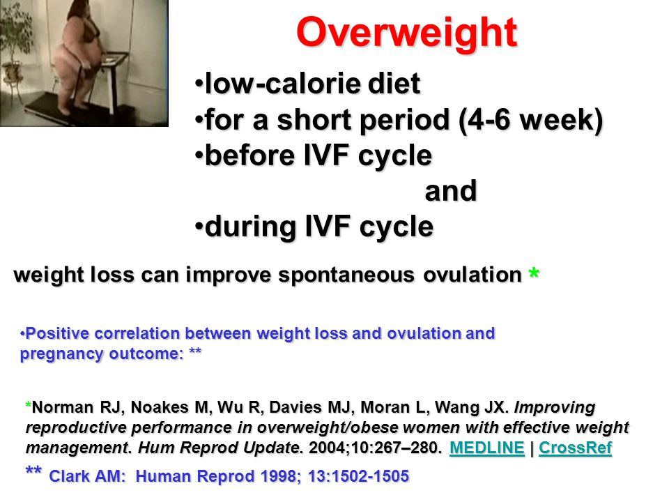 Overweight low-calorie diet for a short period (4-6 week)