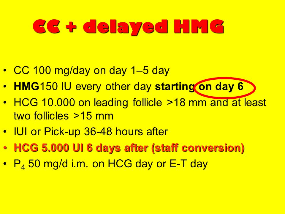 CC + delayed HMG CC 100 mg/day on day 1–5 day
