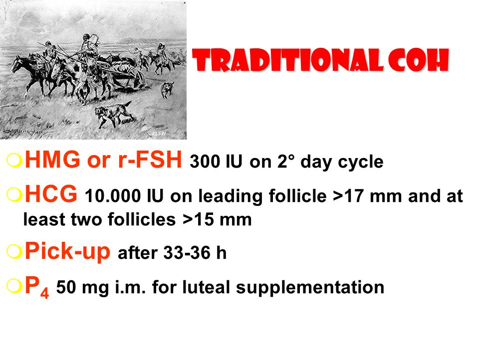 Traditional COH HMG or r-FSH 300 IU on 2° day cycle