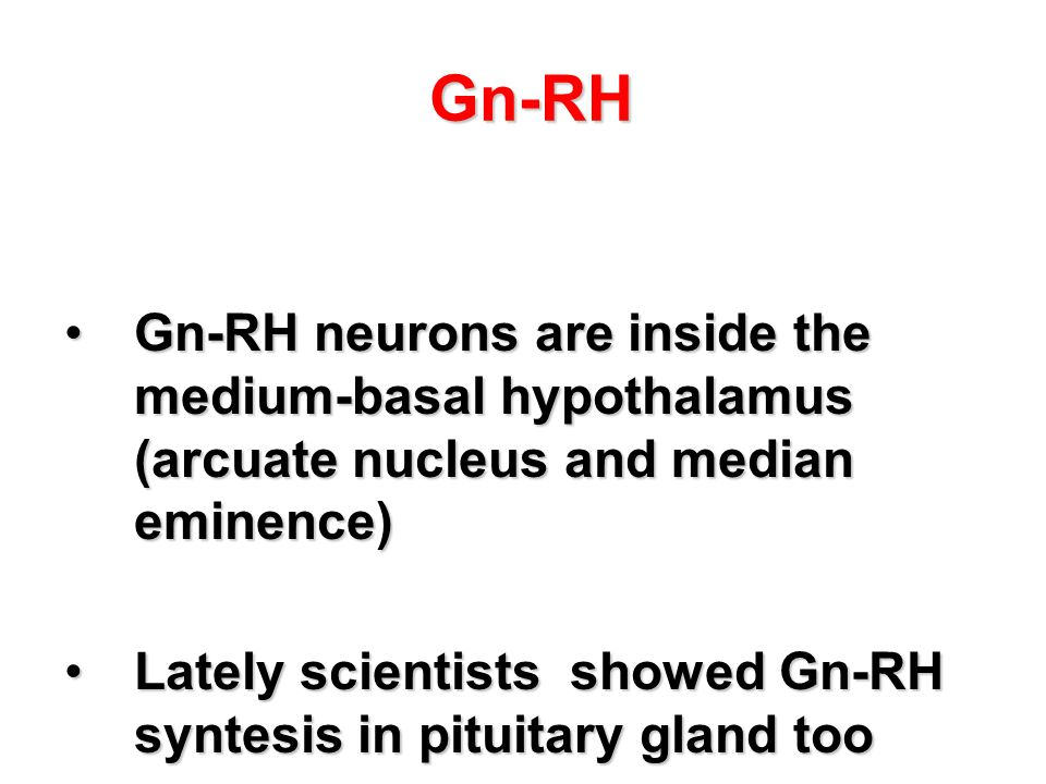 Gn-RH Gn-RH neurons are inside the medium-basal hypothalamus (arcuate nucleus and median eminence)
