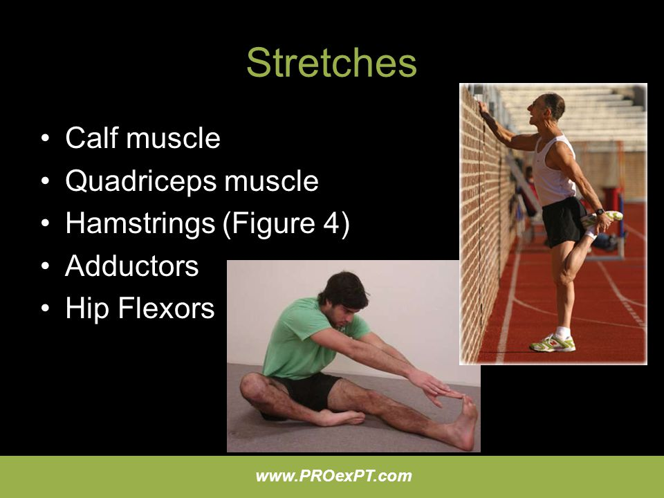 Stretches Calf muscle Quadriceps muscle Hamstrings (Figure 4)