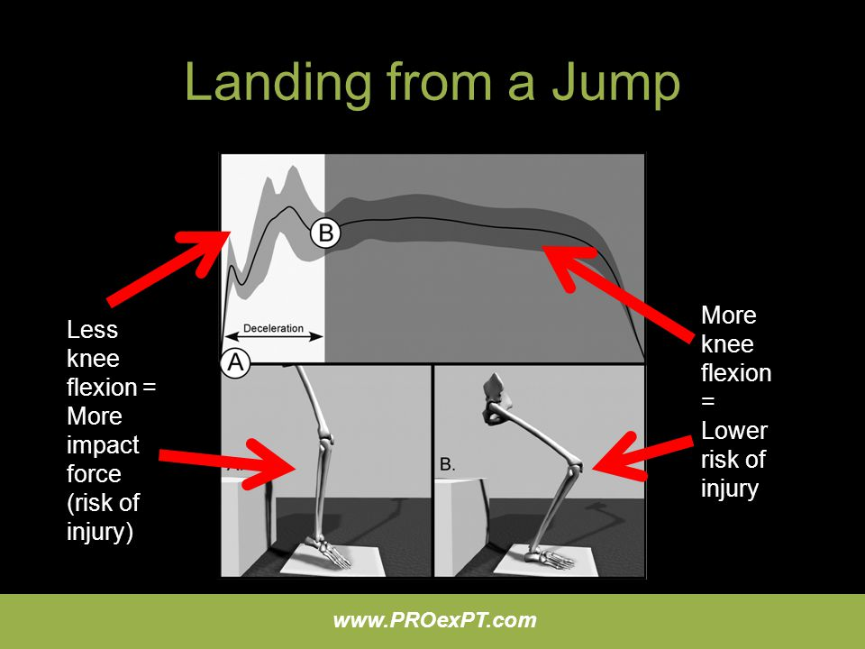Landing from a Jump More knee flexion = Lower risk of injury