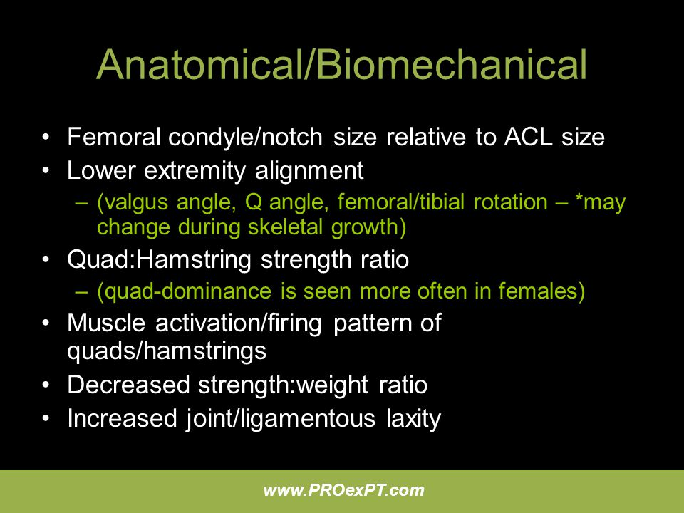 Anatomical/Biomechanical