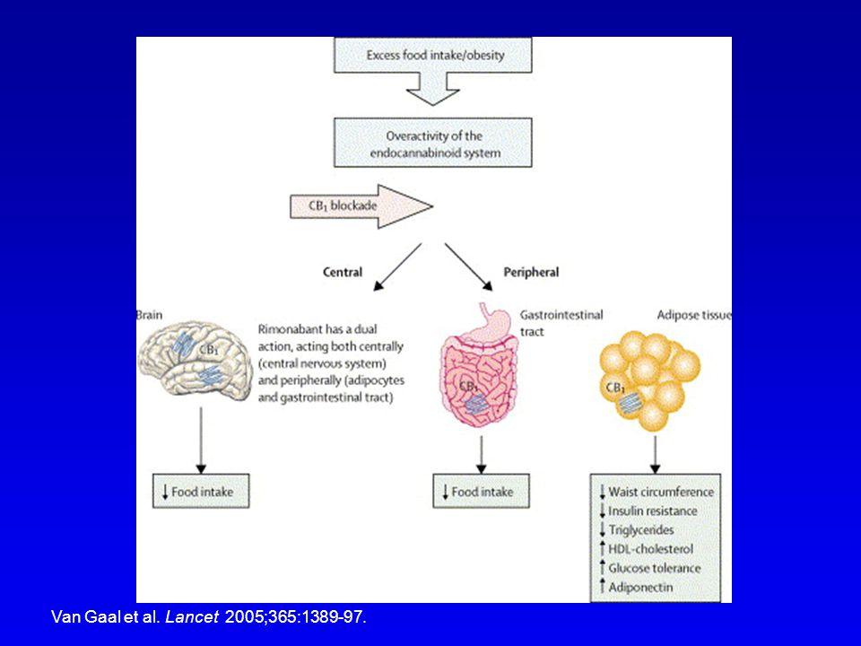 Van Gaal et al. Lancet 2005;365:1389-97.