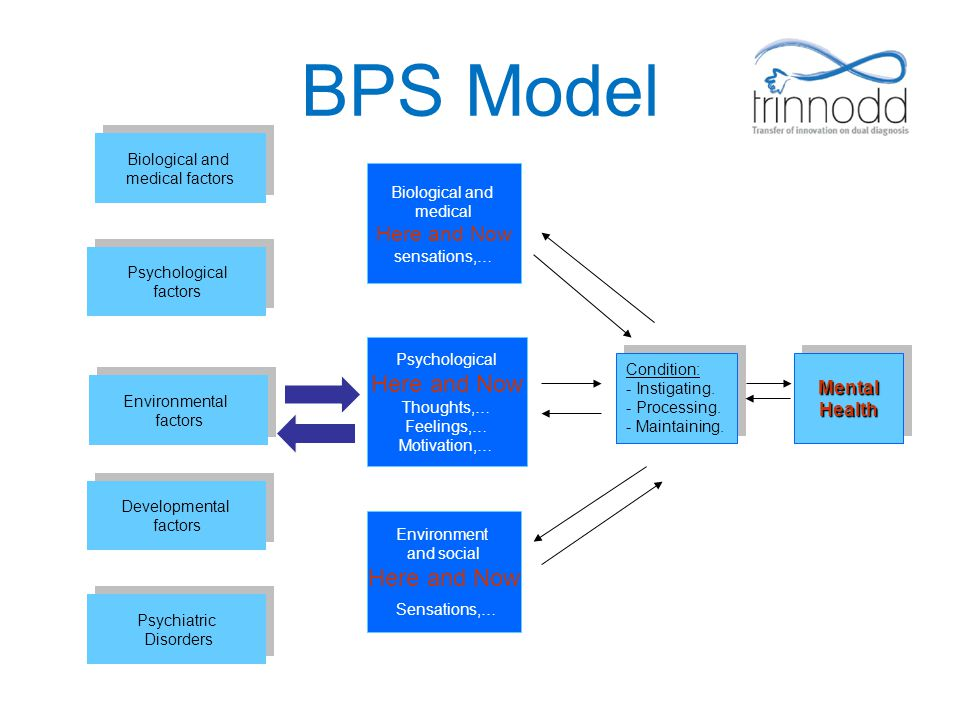 BPS Model Sensations,… Here and Now Mental Health medical factors