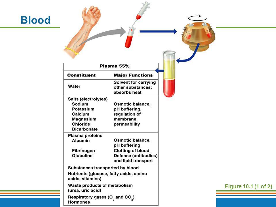 Blood Figure 10.1 (1 of 2)