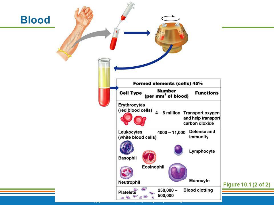 Blood Figure 10.1 (2 of 2)
