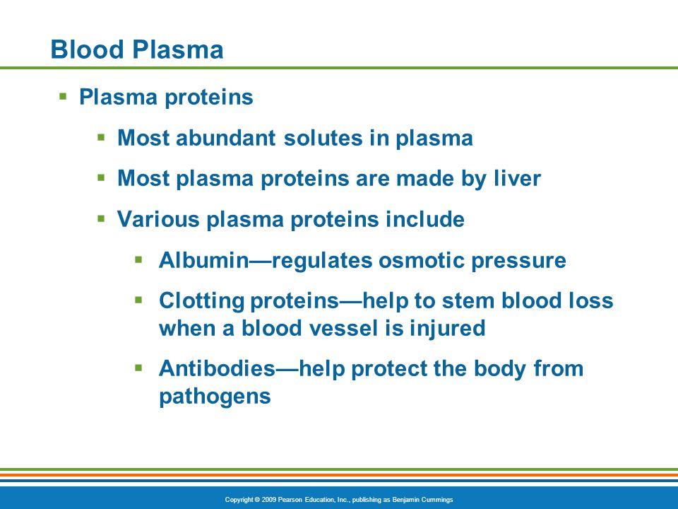 Blood Plasma Plasma proteins Most abundant solutes in plasma