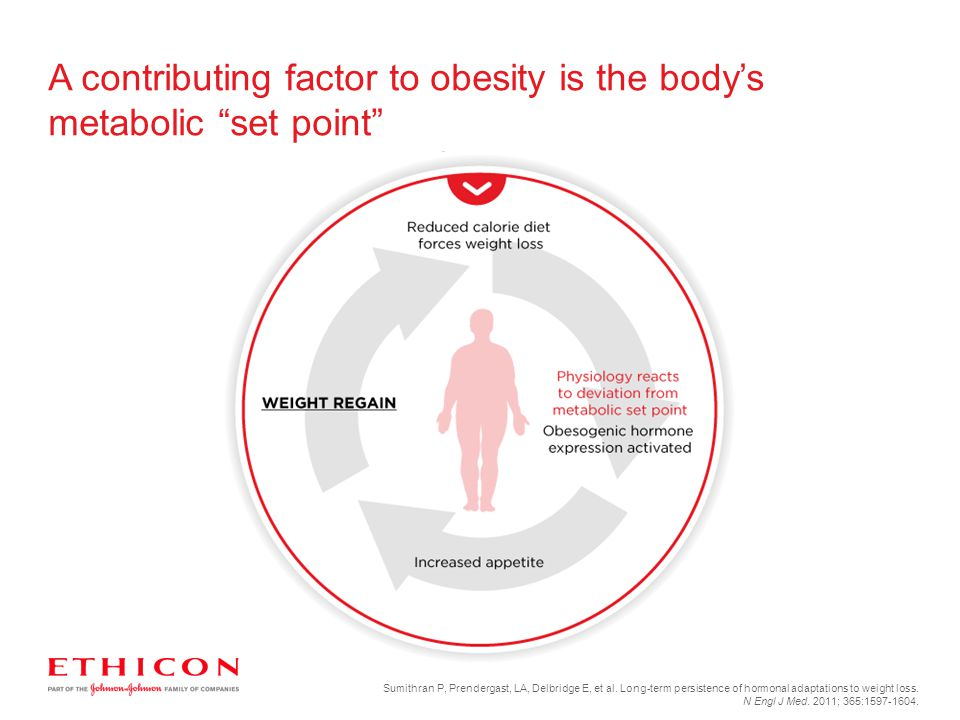 A contributing factor to obesity is the body's metabolic set point
