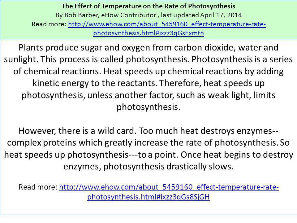 The Effect of Temperature on the Rate of Photosynthesis