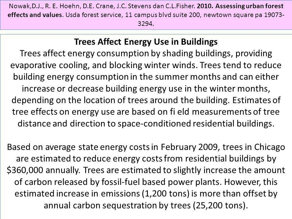 Trees Affect Energy Use in Buildings