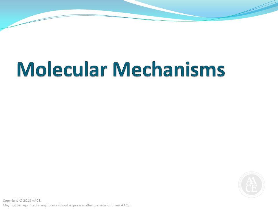 Molecular Mechanisms Copyright © 2013 AACE.