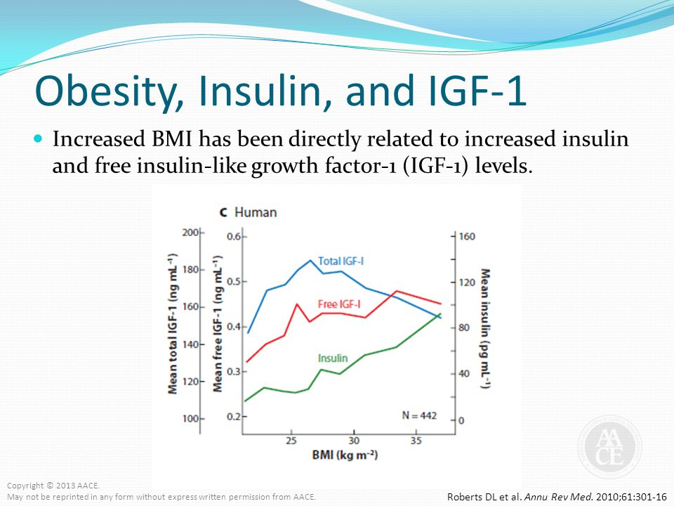 Obesity, Insulin, and IGF-1