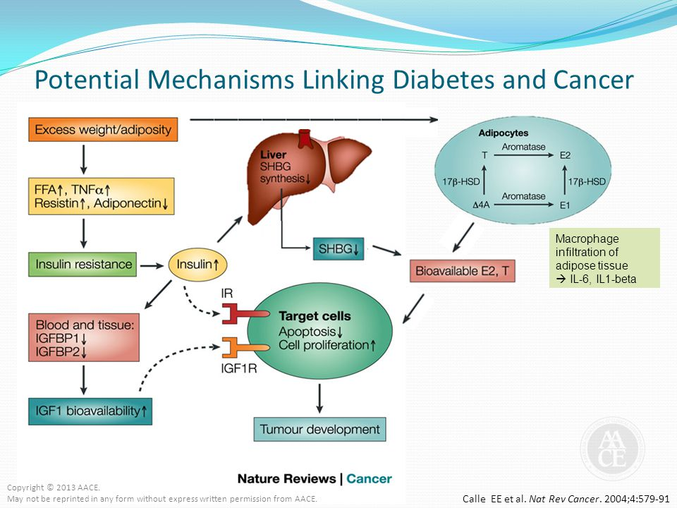 Potential Mechanisms Linking Diabetes and Cancer