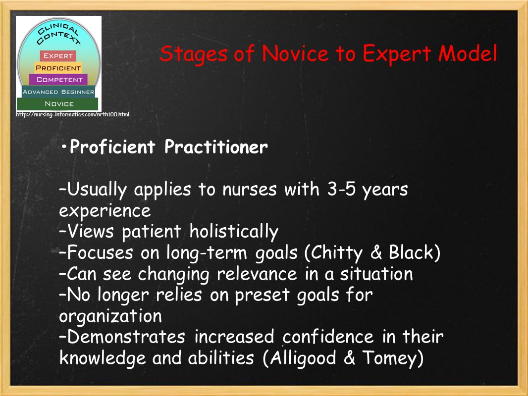 Stages of Novice to Expert Model