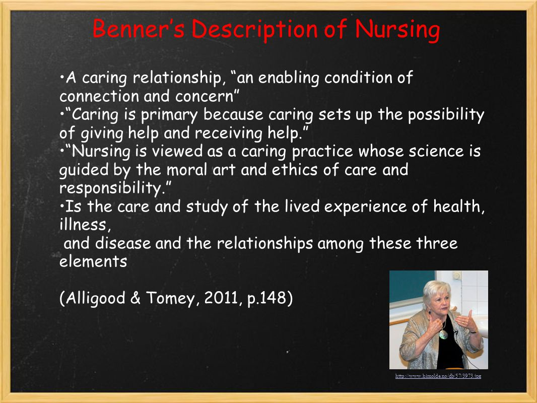 Benner's Description of Nursing
