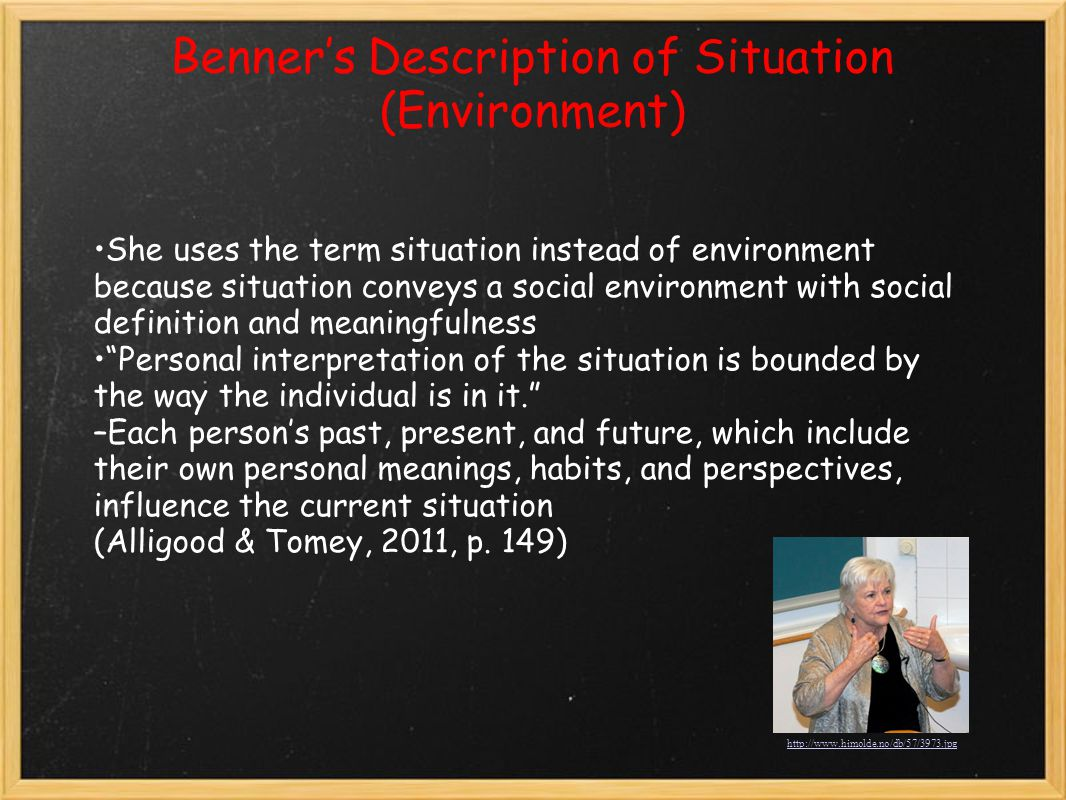 Benner's Description of Situation (Environment)