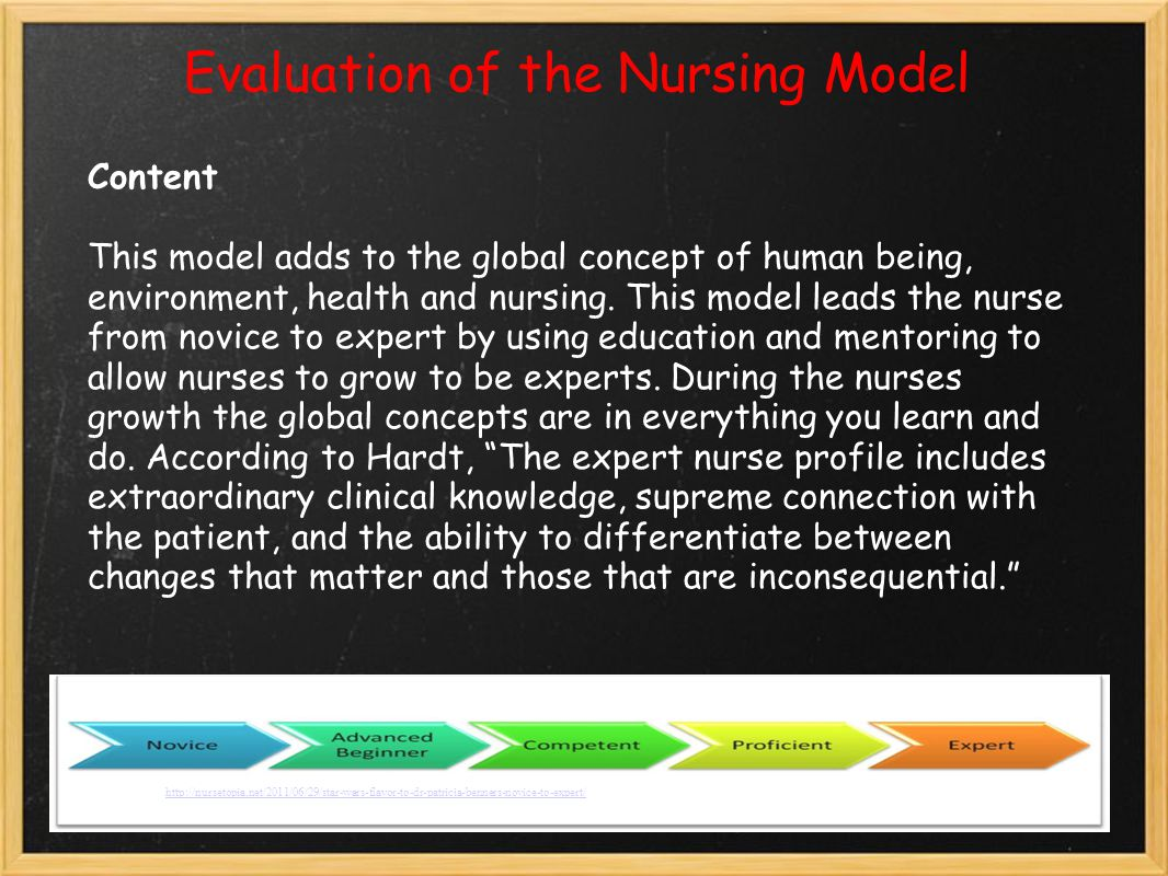 Evaluation of the Nursing Model