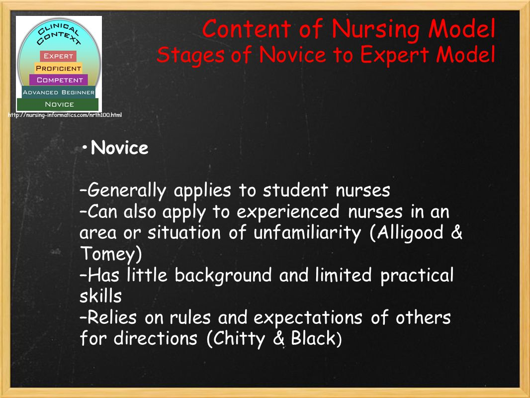 Content of Nursing Model Stages of Novice to Expert Model