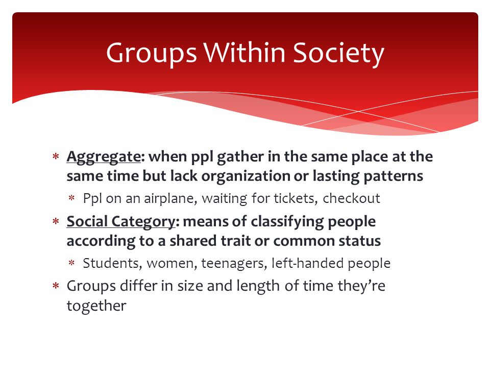 Groups Within Society Aggregate: when ppl gather in the same place at the same time but lack organization or lasting patterns.