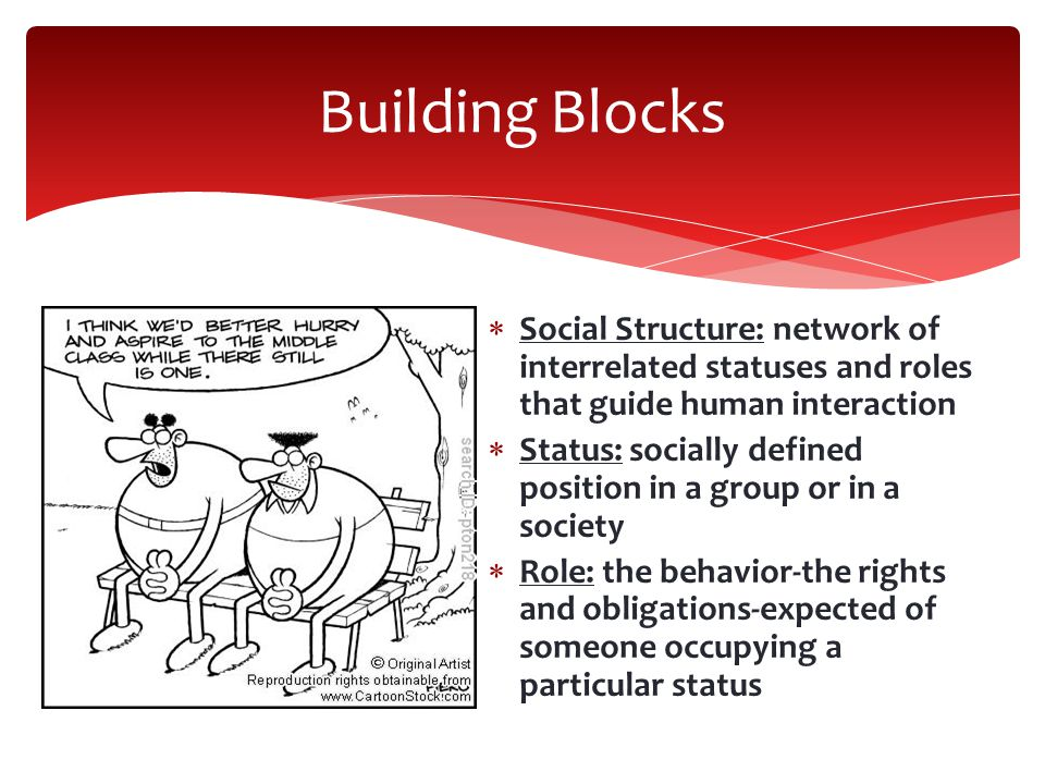 Building Blocks Social Structure: network of interrelated statuses and roles that guide human interaction.