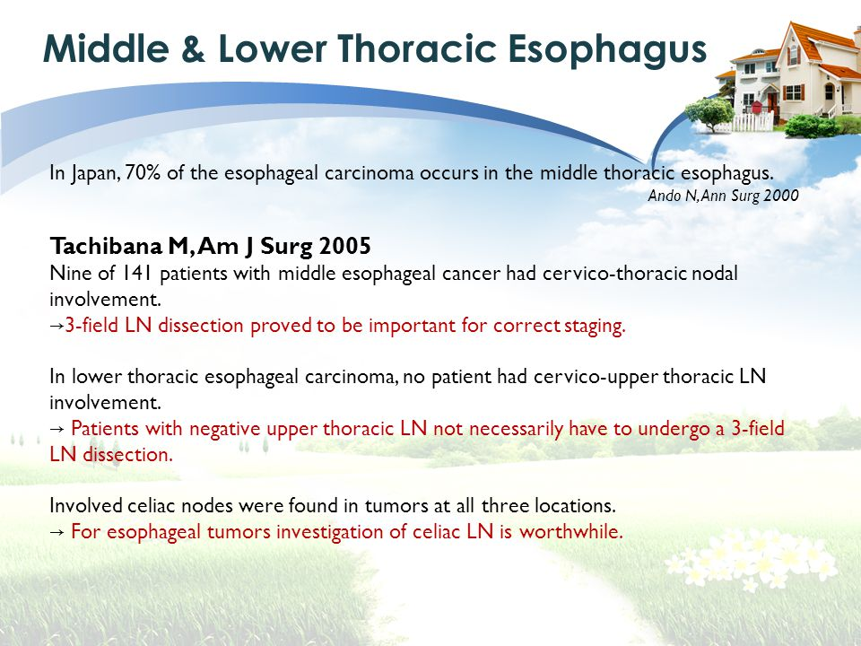 Middle & Lower Thoracic Esophagus