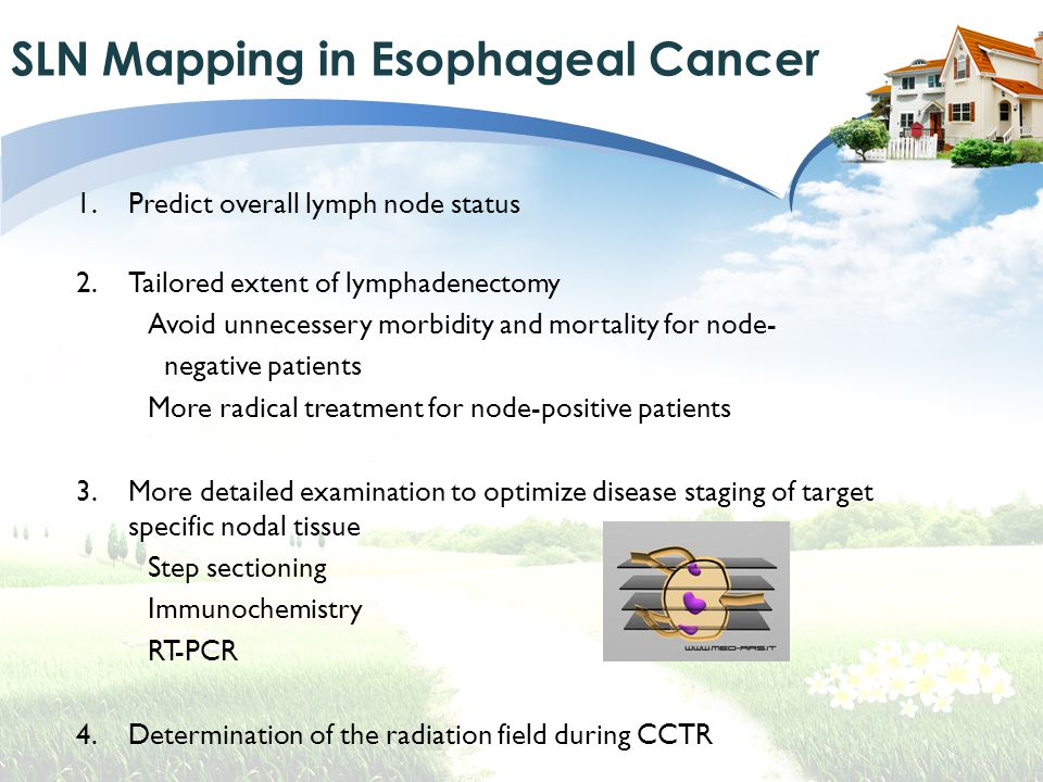 SLN Mapping in Esophageal Cancer