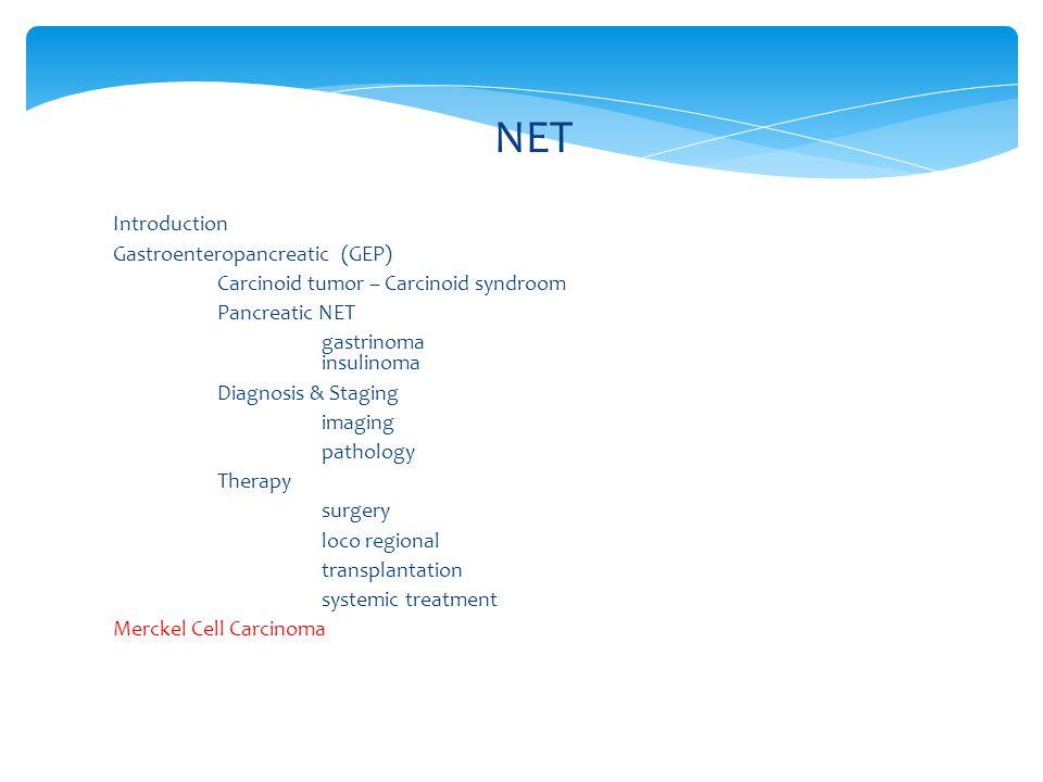 NET Introduction Gastroenteropancreatic (GEP)