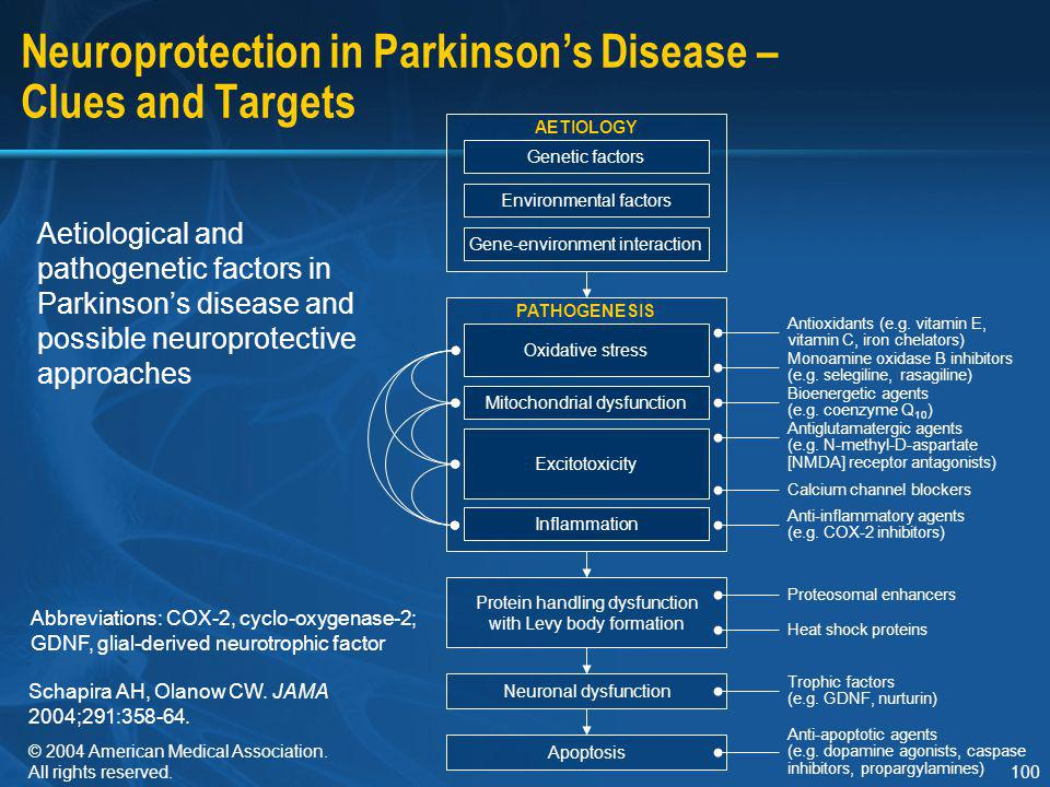 Neuroprotection in Parkinson's Disease – Clues and Targets